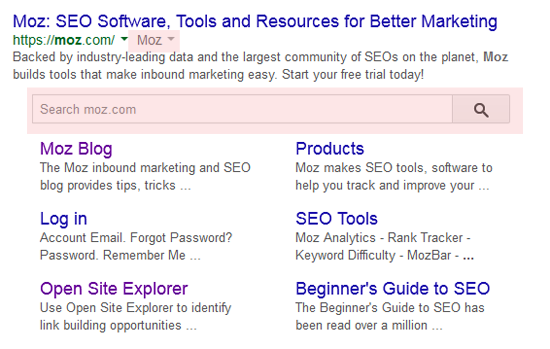 site search and brand jsonld